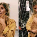 Video of Shelter Cat Hugging His New Owner on TikTok